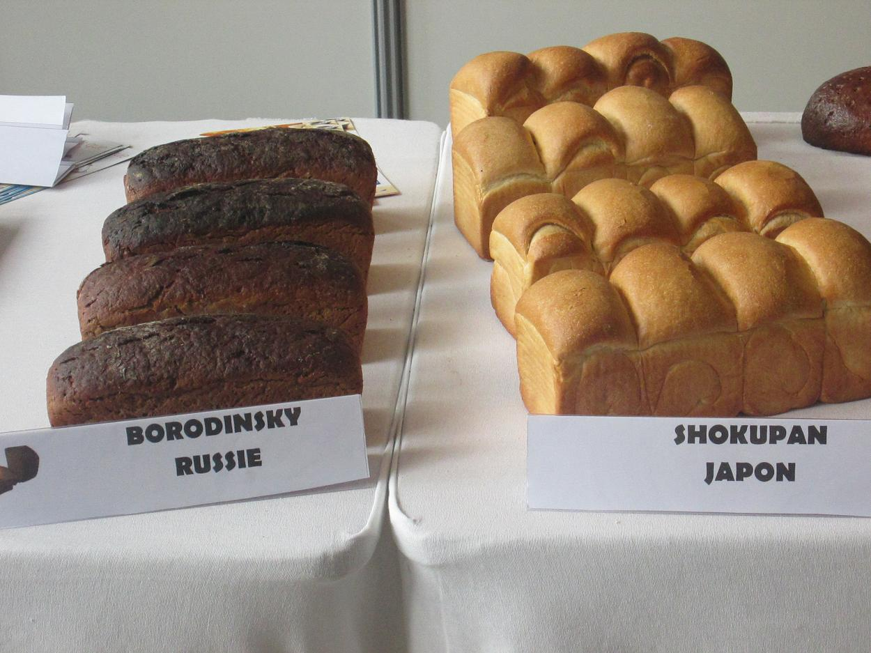 festiwal chleba wypieki ze swiata