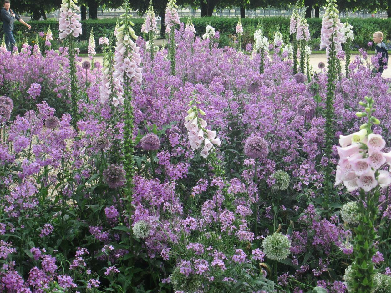 paryskie ogrody