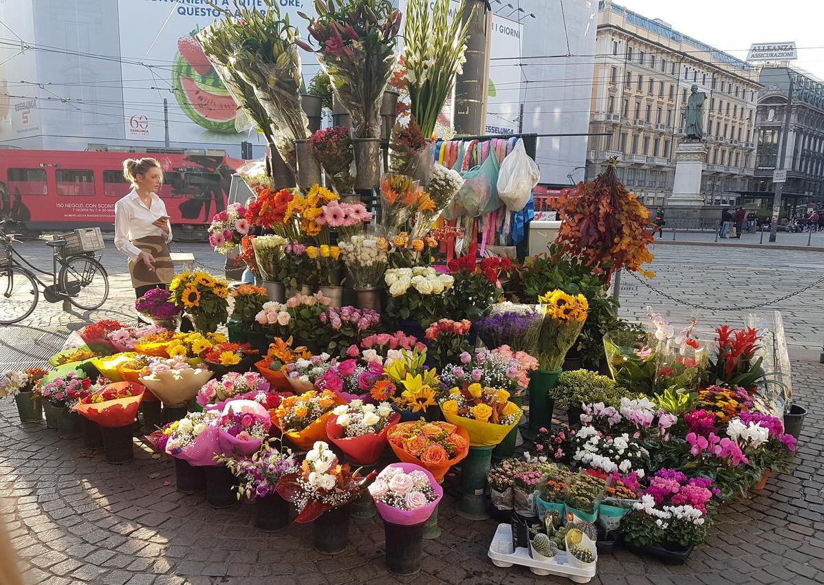 Mediolan uliczne kwiaty