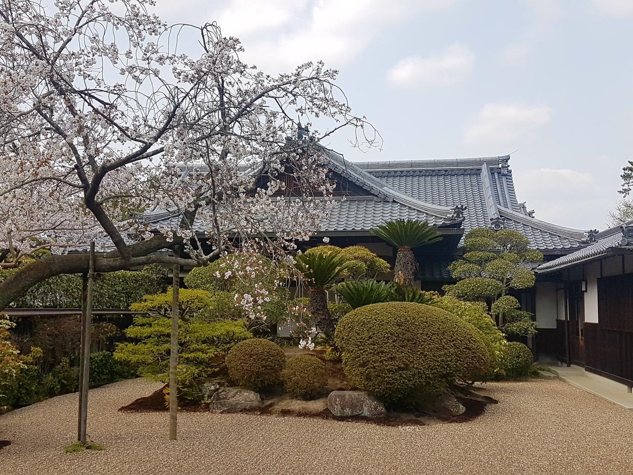 Kamakura Japonia ogrody