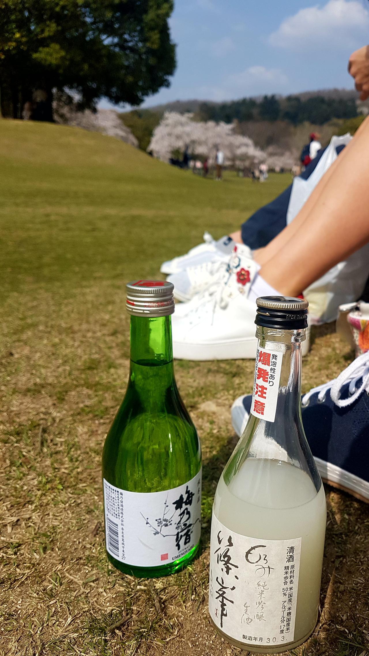 piknik w Nara