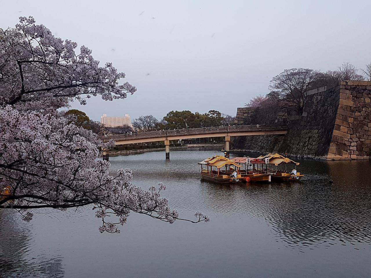 zamek Osaka Japonia