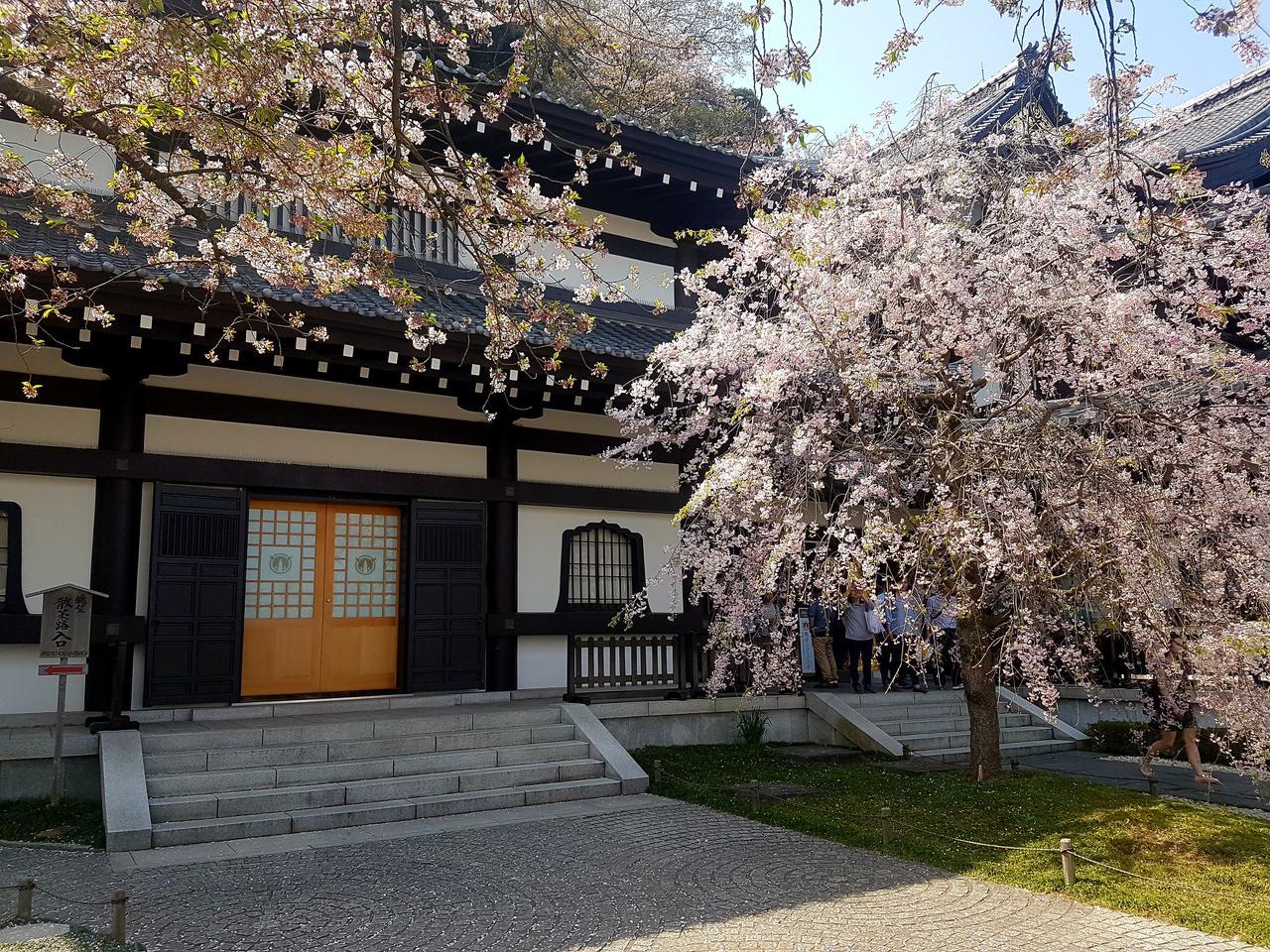 Kamakura Japonia