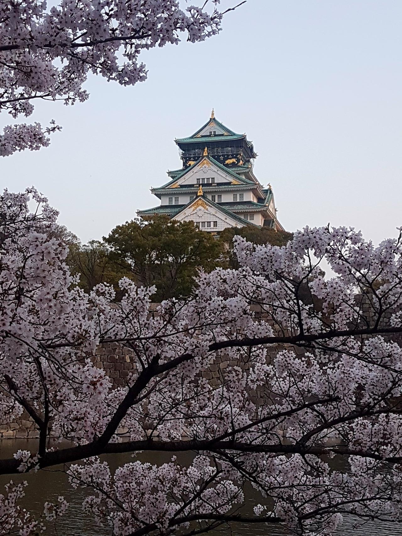 zamke w Osace