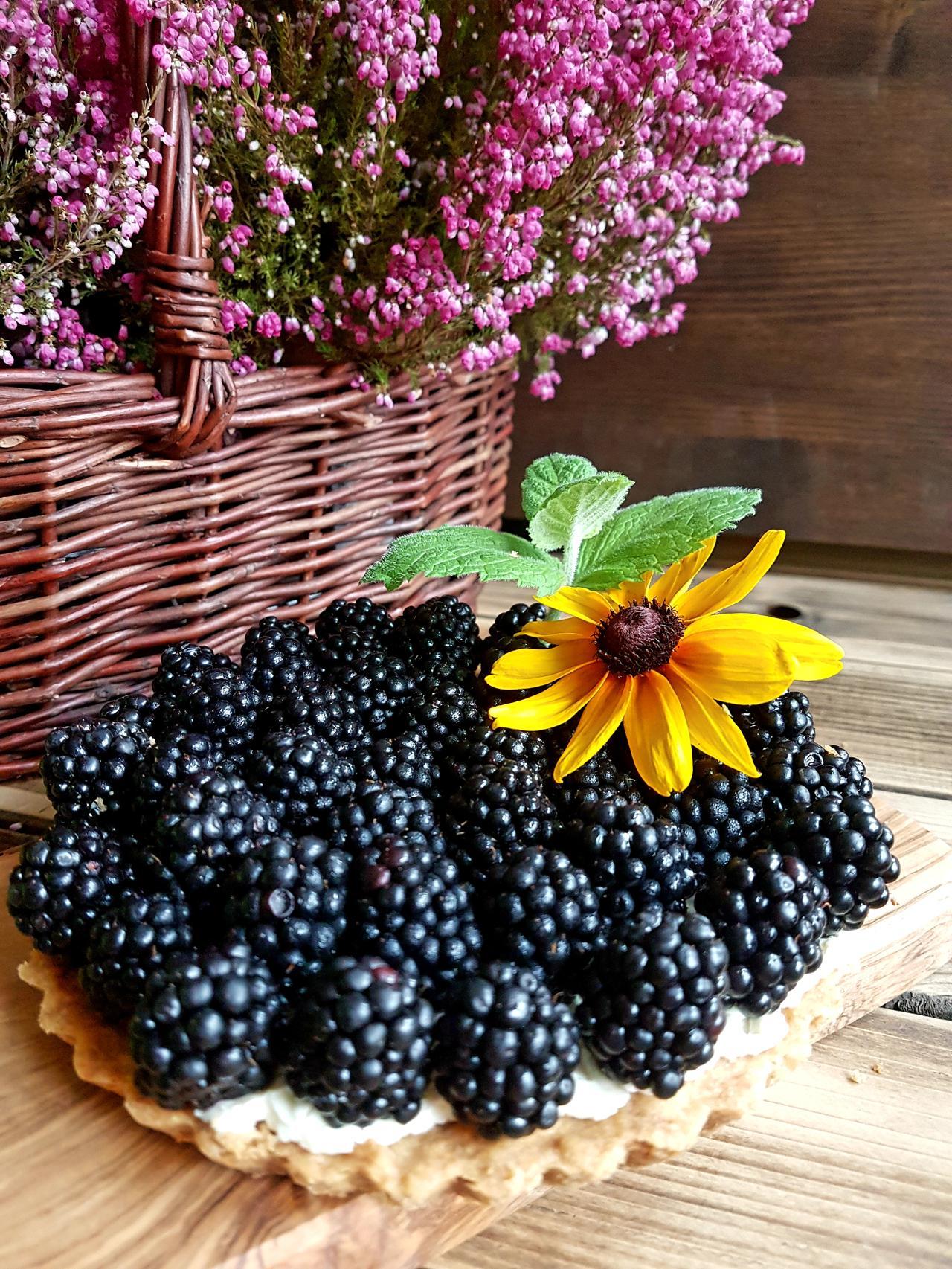 krucha tarta z owocami i biala czekolada